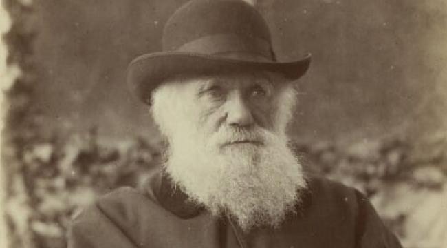 Evrim Teorisi Sahibi Charles Darwin Kimdir?
